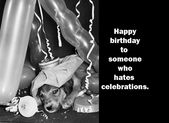 Birthday Sad Puppy Ecard