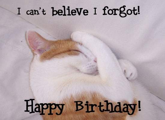 Birthday - Cute Cat