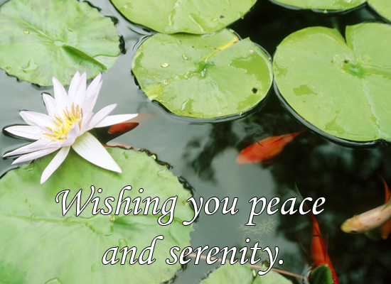 Peace and Serenity