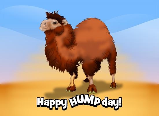 Wednesday Hump Day eCardHump Day