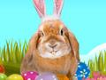 New Ears for Easter