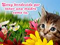 Día de la Madre Gatito