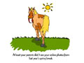 Spring Break Horse