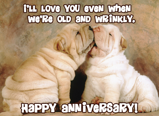 Cute Dog Anniversary