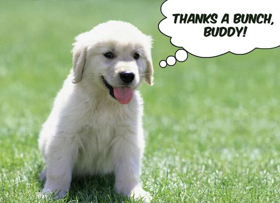 thank friend